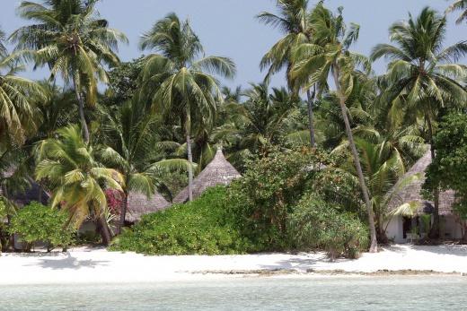 Maledivy-Kuramathi Village