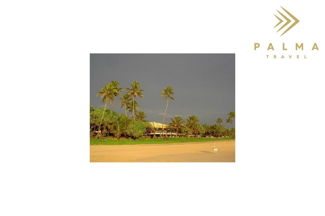 Srí Lanka - Habaraduwa