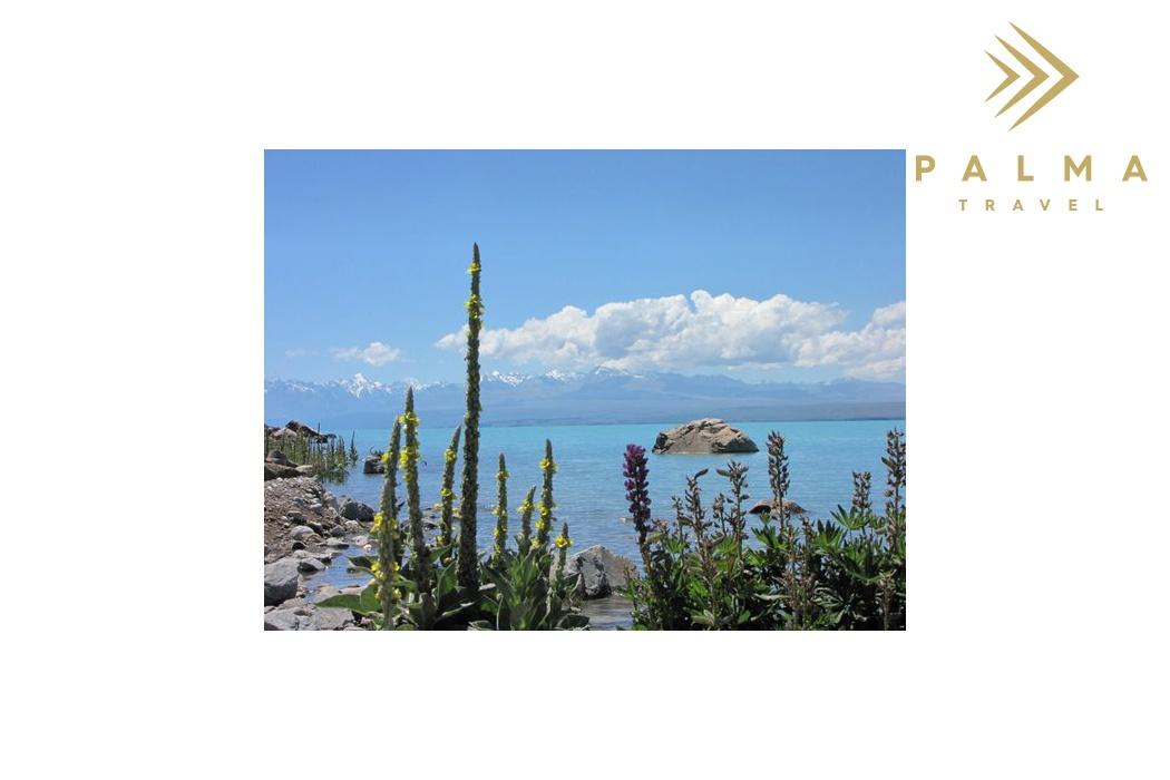 Jizni ostrov jezero Tekapo