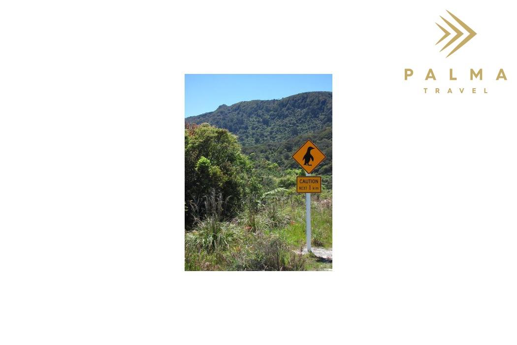 Symbol Nového Zélandu