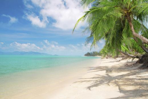 Thajsko - ostrov Koh Samui
