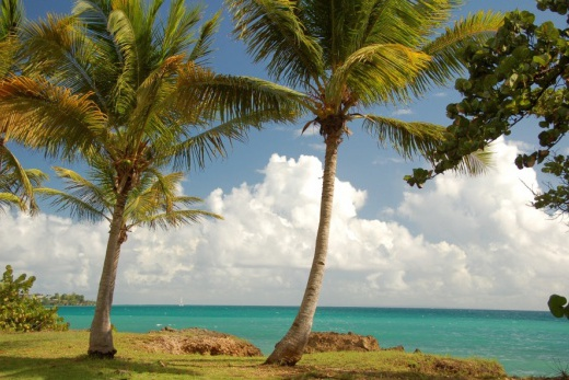 Guadeloupe - Gosier