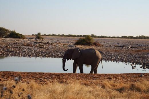 Poznávací zájezdy v Namíbii