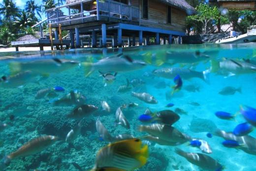 Bora Bora - pohled z moře