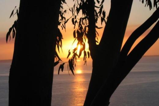 Austrálie Fraser Island