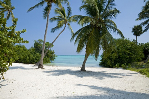 Dominikánská Republika Punta Cana