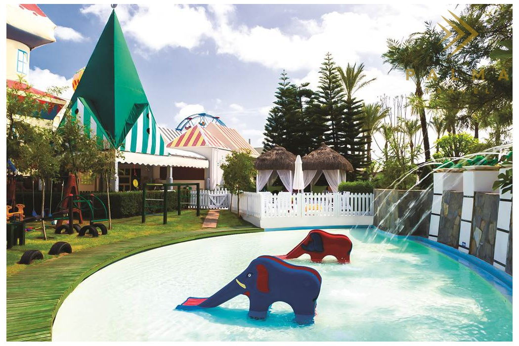 Delphin Diva   CK Palma Travel
