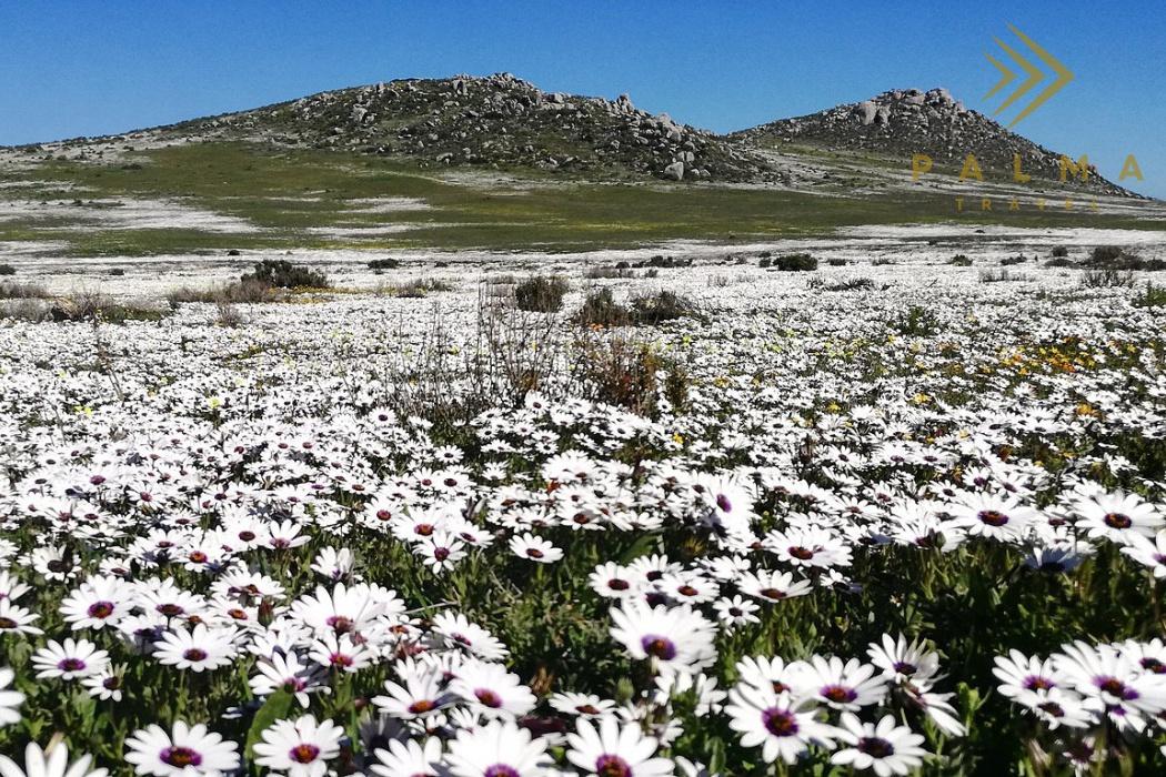 7 denní odpočinek v přírodě Jihoafrické republiky/ 4 noci