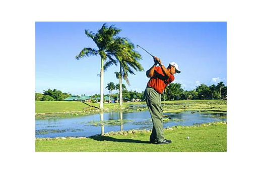 Occidental Caribbean Village Playa Dorada - golf