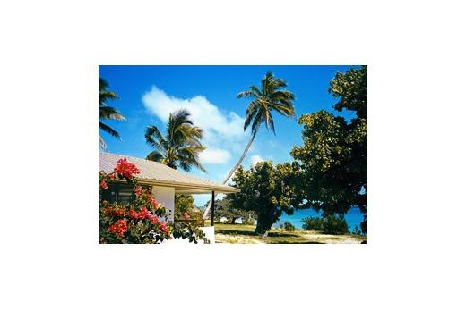 Sandy Beach Resort zahrada