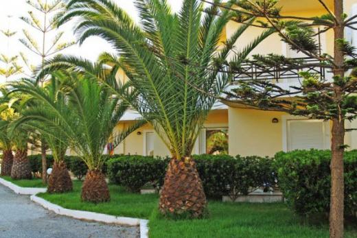 bungalovy jsou rozmístěny v pěkně upravené zahradě