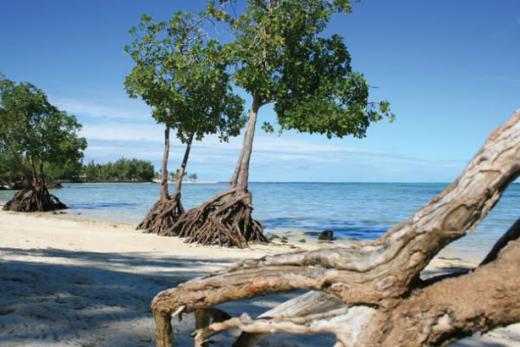 Jalsa Beach