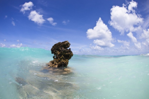 Perly Indického oceánu