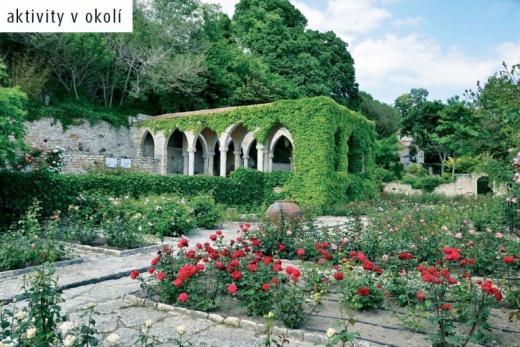 Joya Park