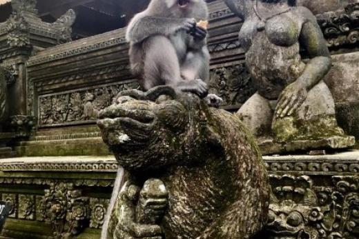 Ostrov bohů Bali
